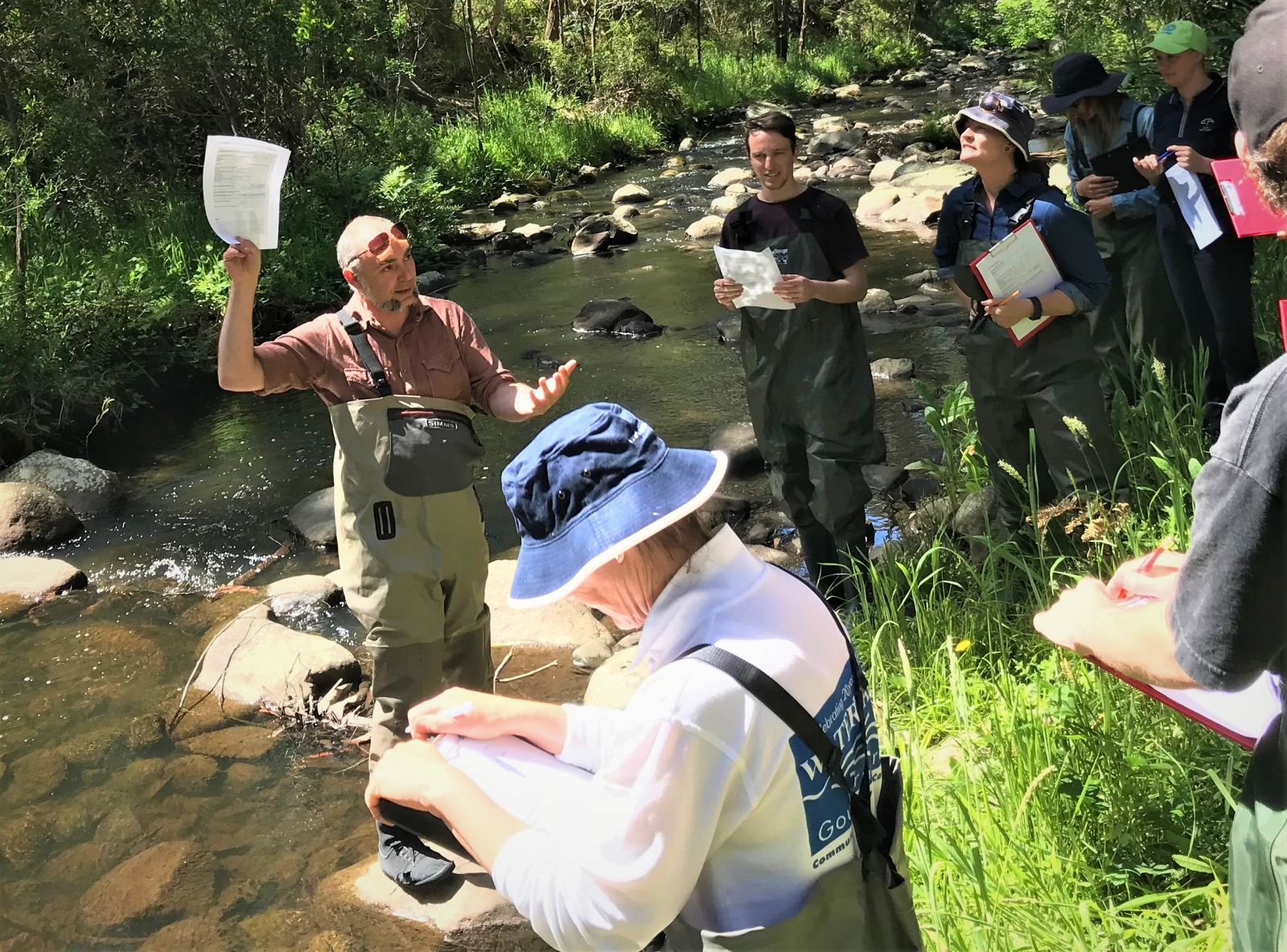 Waterbug ID training